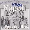 Cover of the album Viva Napoli (Scapricciatiello)