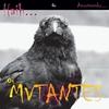 Couverture de l'album Haih or Amortecedor (Bonus Track Version)