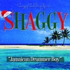 Cover of the album Jamaican Drummer Boy - Single