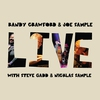 Cover of the album Live (with Steve Gadd & Nicklas Sample)