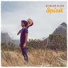 Couverture de l'album Spirit