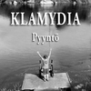 Cover of the track Pyyntö