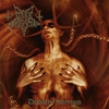 Cover of the album Diabolis Interium