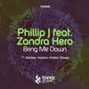Couverture de l'album Bring Me Down (feat. Zandra Hero)