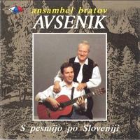 Cover of the track S Pesmijo Po Sloveniji