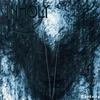 Cover of the album Rapture