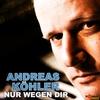 Couverture de l'album Nur wegen dir (Single Edit) - Single