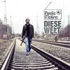 Couverture de l'album Diese Welt - Single