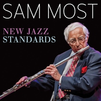 Cover of the track New Jazz Standards