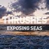 Cover of the album Exposing Seas