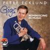 Couverture de l'album Gigs - Reminiscing In Music