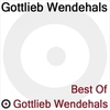 Cover of the album Best of Gottlieb Wendehals