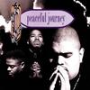 Couverture de l'album Peaceful Journey