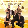 Cover of the album Zbirka Uspesnic