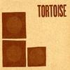 Cover of the album Tortoise