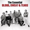 Cover of the album The Essential Blood, Sweat & Tears