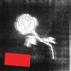 Cover of the album Liberato