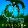 Couverture du titre Matadora (Original US Radio Edit)