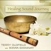 Couverture de l'album Healing Sound Journey