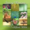 Cover of the album Spring Fantasy