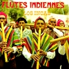 Cover of the album Flutes Indiennes