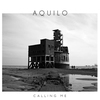 Cover of the album Calling Me - EP