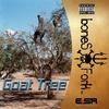 Cover of the album Goat Tree
