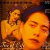 Couverture de l'album Tree of Life