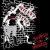 Couverture de l'album Shaken and Disturbed