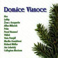Couverture du titre Domáce Vianoce
