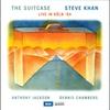 Couverture de l'album The Suitcase