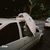 Couverture de l'album Negro Swan