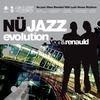 Couverture de l'album Nü Jazz Evolution
