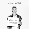 Cover of the track What Do You Mean?