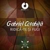 Cover of the album Ridica-Te Si Fugi - Single