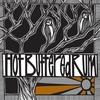 Couverture de l'album Hot Buttered Rum