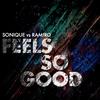 Couverture de l'album Feels So Good (Sonique vs. Ramiro) [Remixes] - Single