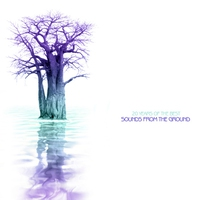 Cover of the track 20 Years of the Best Sounds From the Ground