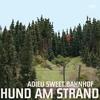 Cover of the album Adieu Sweet Bahnhof