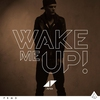 Cover of the track Wake Me Up (2013)