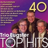 Cover of the album 40 Trio Eugster Top Hits