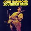 Couverture de l'album Southern Fried