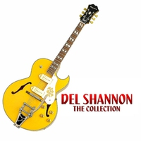 Cover of the track The Del Shannon Collection