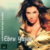 Cover of the album Aşkımız Buraya Kadar