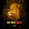 Couverture de l'album Lion - EP