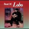 Couverture de l'album Best of Lobo