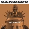 Couverture de l'album The Master (Binaural+)