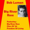 Cover of the album Big River Rose