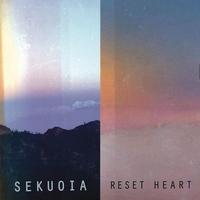 Couverture du titre Reset Heart
