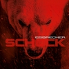 Cover of the album Schock